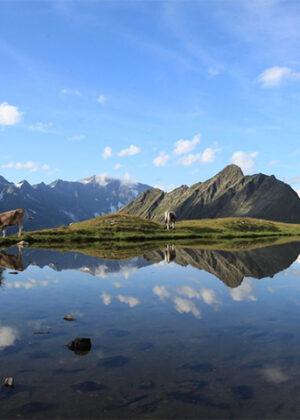 Pfelders Südtirol
